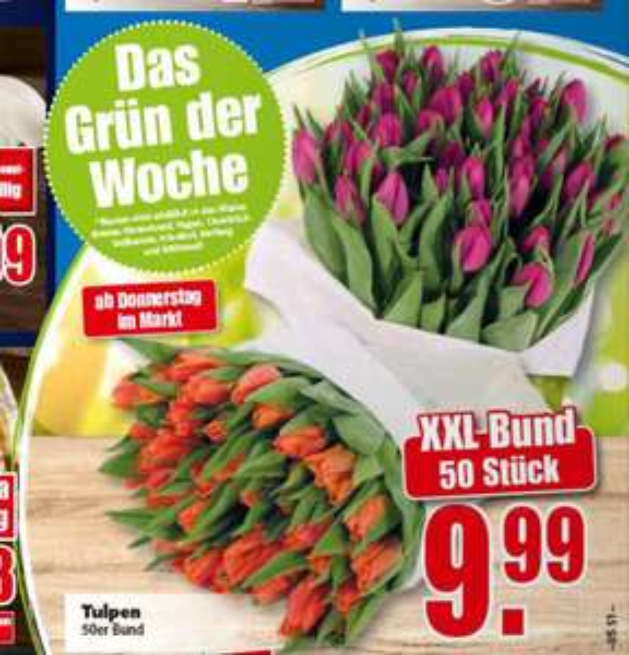 [Edeka Minden/West] 50 Tulpen für 9,99
