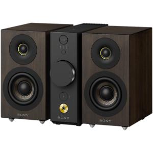 Sony CAS-1 High-Resolution Audio-System