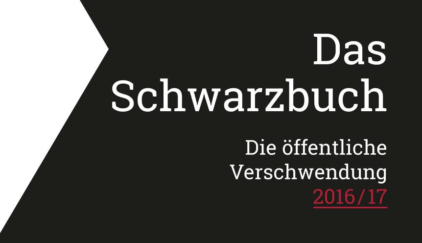 Schwarzbuch 2016/17 + Aktion Frühjahrsputz 2017 kostenlos