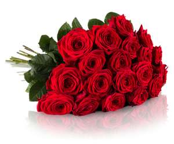 Alles für die Liebe: 20 Red Naomi Rosen (50cm) für 19,54€ inkl. VSK bei Miflora <3