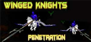 Steam Key für das Spiel Winged Knights: Penetration