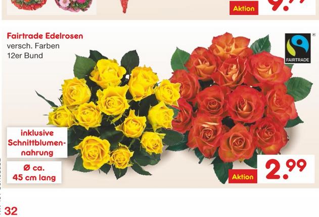 Netto MD ab 11.05  12 Rosen ca 45cm lang versch. farben ca 25cent/ Rose