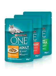 Neue Purina One Coupons
