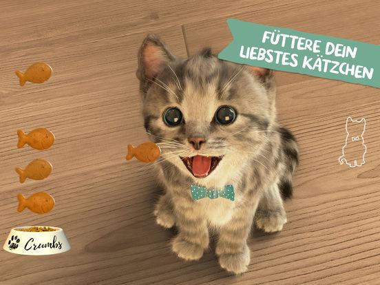 [ iOS ] App der Woche: Kleines Kätzchen - Little Kitten