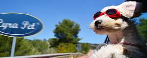 5% Rabatt auf alles (auch Tiernahrung ;) bei Lyra Pet - BARF