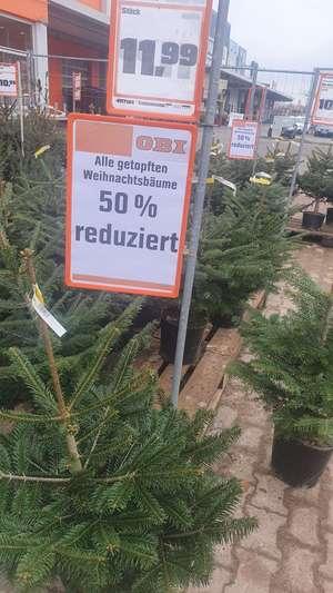 Lokal - 50% auf getopfte Weihnachtsbäume im Obi Biberach (88400)