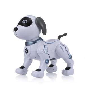 LE NENG SPIELZEUG-K16A Elektronischer Roboterhund