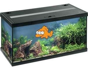 Eheim Aquastar 54 LED, FarbenSchwarz oder Weiß, Kölle Zoo