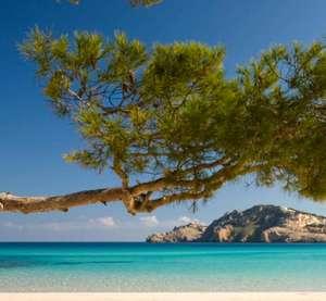 Mallorca (Sept-Okt): Eine Woche im 4* Hotel inkl. Frühstück für 116€ p.P. (kostenlos stornierbar)