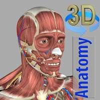 [android + ios] 3D Anatomy
