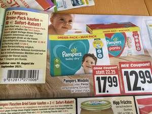 Lokal Edeka Pampers Dreier-Pack Babydry & Pants