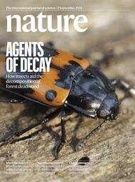 Nature Magazin Jahresabo + Online-Zugang + 48 weitere Nature research & Reviews Journals (z.B., Physical, Biological) mit 40% Rabatt