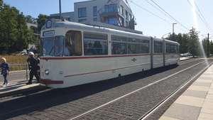 Kostenloser Nahverkehr in Potsdam am 19.09.2021