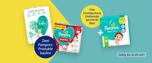 1 Einzelpackung Pampers gratis bei Kauf von 25 Euro (BabyDry & Premium) ab Gr.2