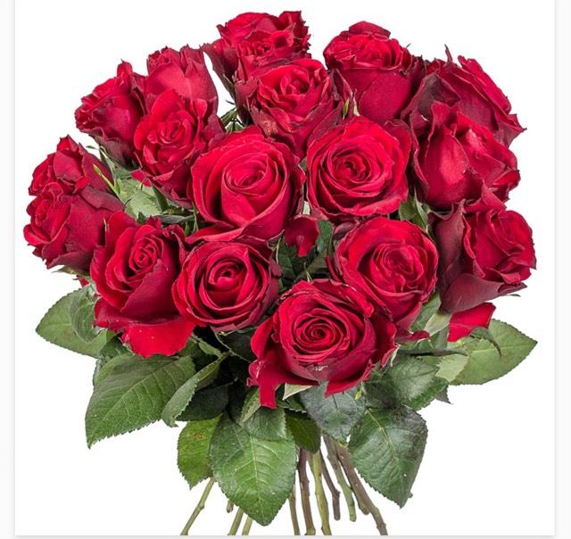 [Lidl Blumen] 18 langstielige Rote Rosen für 13,99 inkl. Versand!