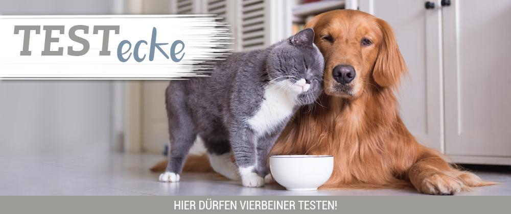 Zookauf Hunde und Katzenfutter Proben insg. bis  zu 3100g