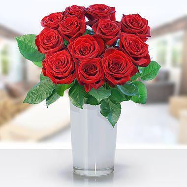 Rosenspecial bei Lidl-Blumen