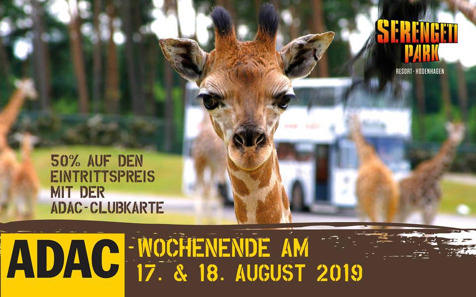 ADAC-Wochenende 2019 beim Serengeti-Park 17. und 18. August 2019