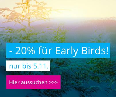 Jollydays: X-Mas Early Bird Aktion: 20% Rabatt auf die 20 Top Seller: 6 Stunden lang Bier brauen lernen vom Braumeister für 55,20€