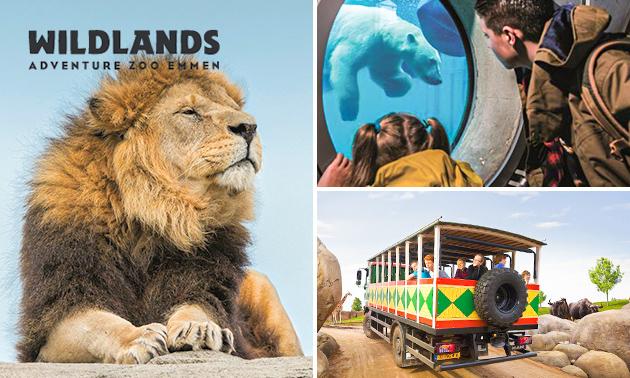 WILDLANDS Adventure Zoo (Emmen/NL)