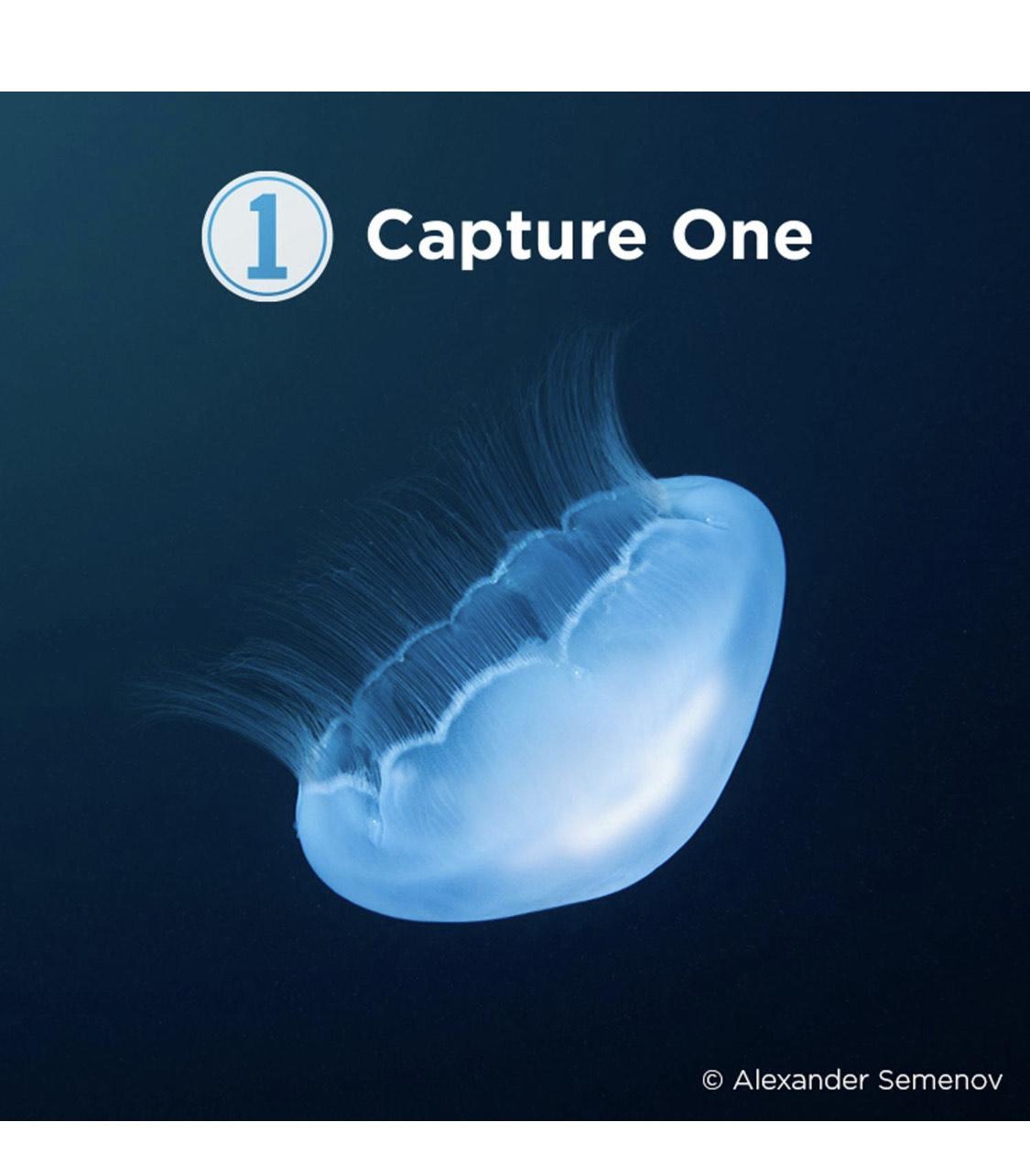 Calumet - Phase One Capture One Pro 20 Downloadkey