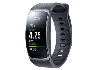 Samsung Gear Fit 2 (L, dunkelgrau)