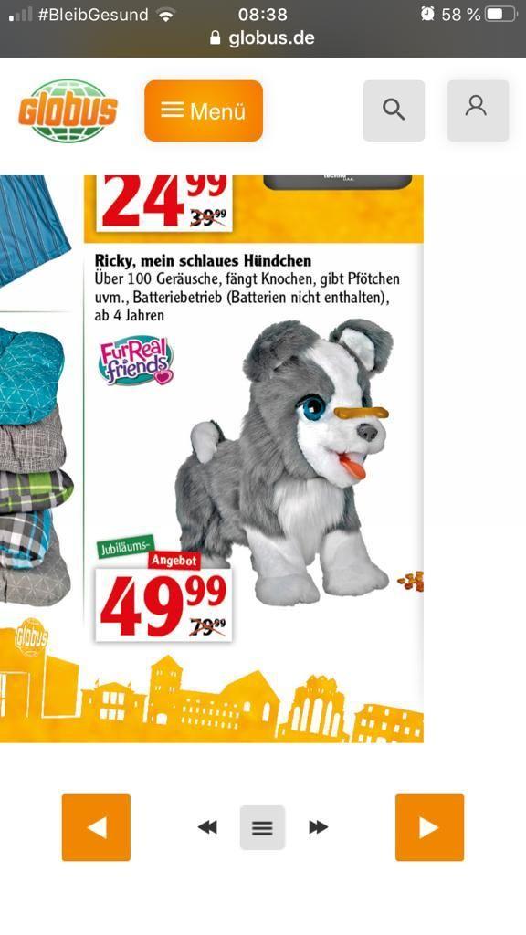 (LOKAL) FurReal Friends Ricky, mein schlaues Hündchen im Globus Halle-Dieselstraße