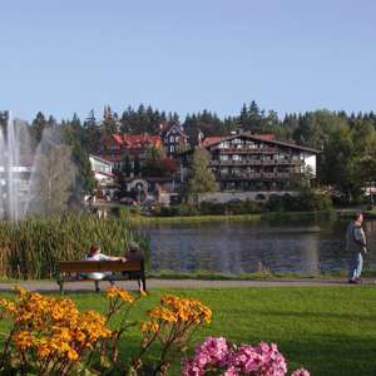 Harz: 3 Nächte inkl. Halbpension - 2 Personen - 4* Hotels am Kranichsee im Oberharz