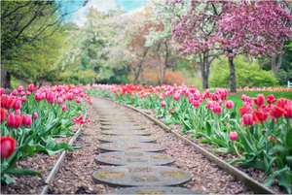mydealz Garten,- Balkonsaison Frühjahr KW 12, Wochenübersicht die Vierte