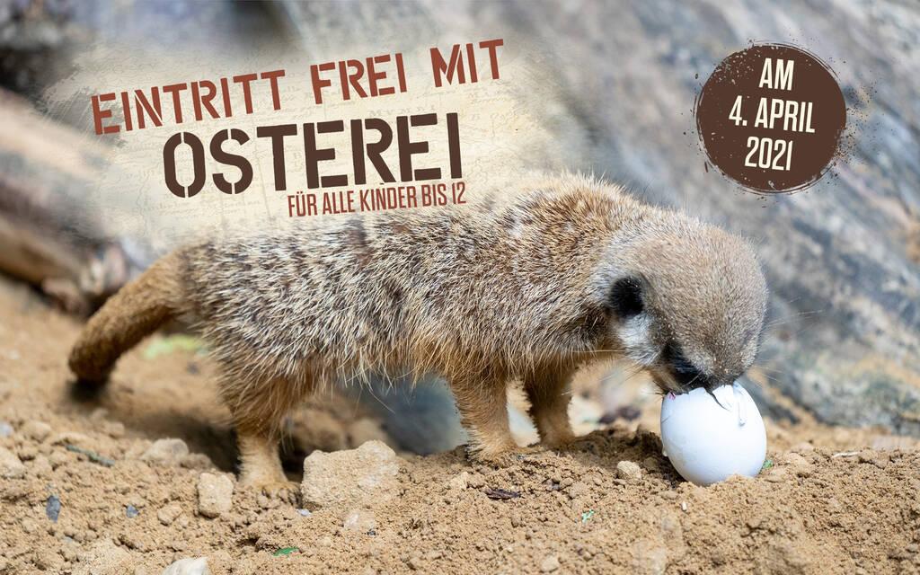 [Serengeti-Park] Eierdeal in Hodenhagen - Ostersonntag - Freier Eintritt für Kinder bis 12 Jahren mit (Oster)Ei
