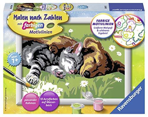 Ravensburger Malen nach Zahlen 28015 -Tiefer Schlaf für 6,99 (Prime ) Amazon- Für Kinder ab 7 Jahren Hund und Katze Haustiere