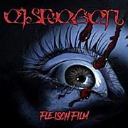 Eisregen - Fleischfilm (limitiertes Boxset mit CD, 3D-Brille, 4 Art-Cards & Patch)