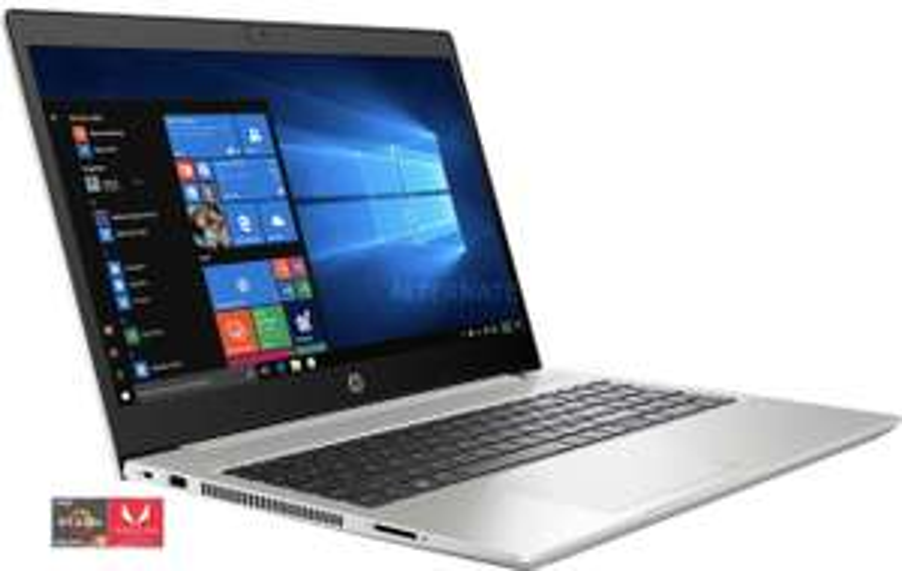 HP ProBook 455 G7 (175W6EA), Notebook