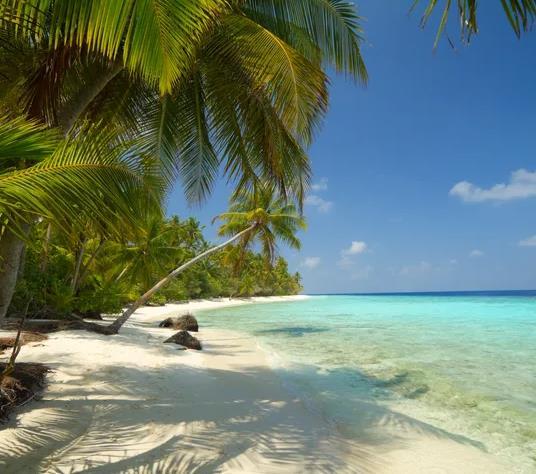 Tulum / Mexiko (bis Dez) Eine Woche in der 40m² Suite des 5* Bahia Principe (All-Inclusive) für 340€ p.P. (Kostenlos stornierbar)