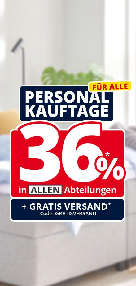 KHG Akku-Stielsauger ASS-2221 dank Höffner Aktion: 36% Rabatt im großen Umfang