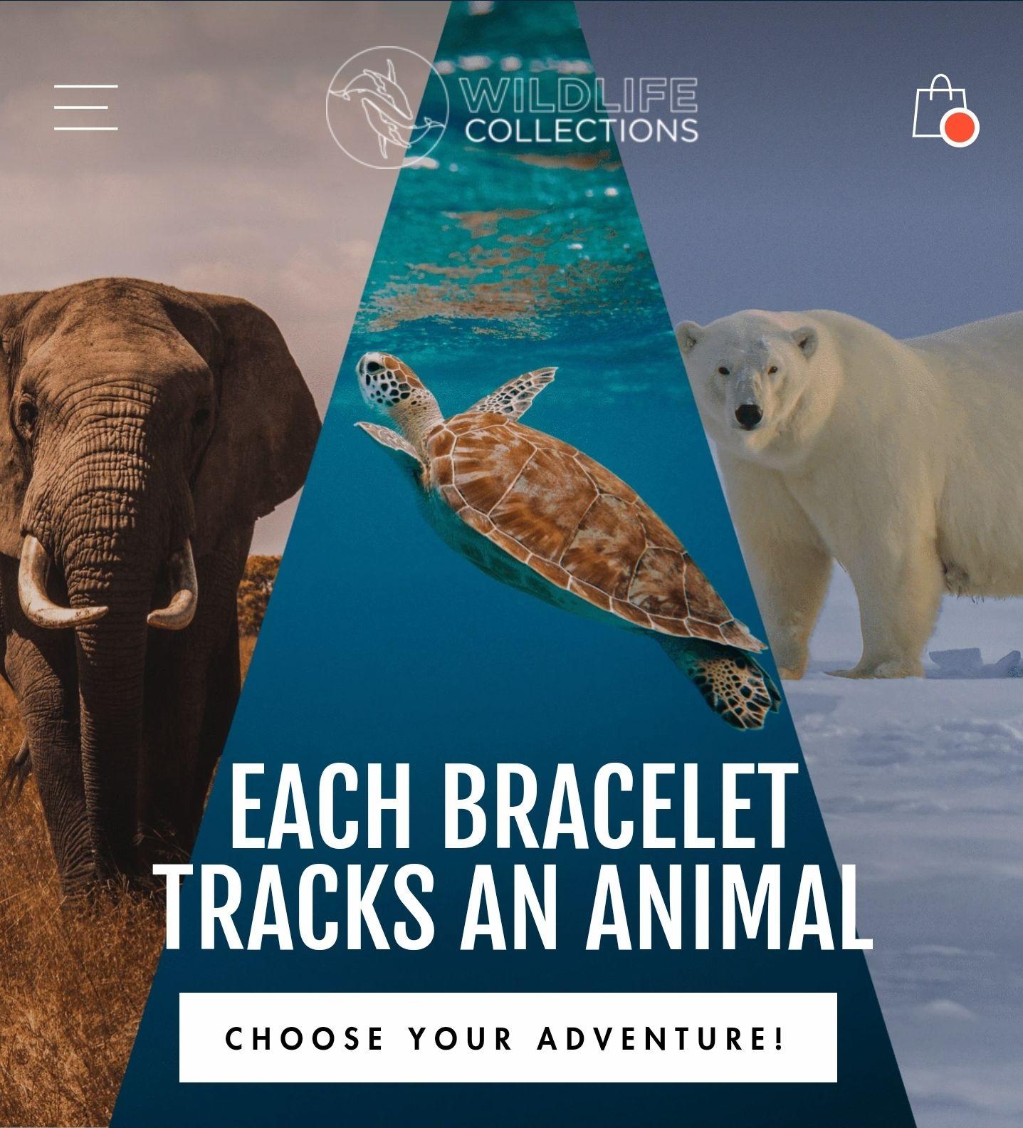 2 für 1 auf Armbänder von Wildlife Collections
