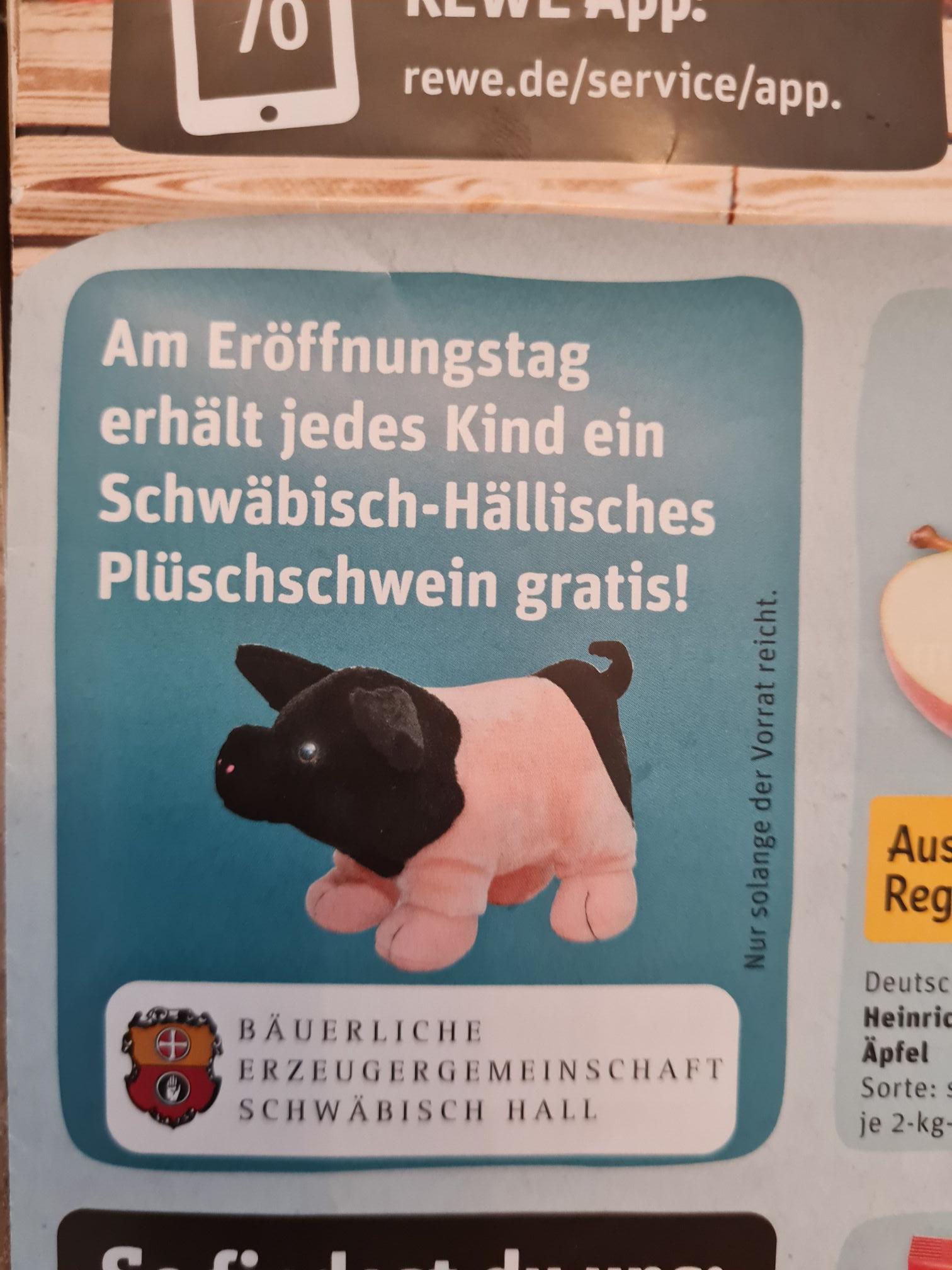 Kirchberg a.d. Jagst 74592 REWE Neueröffnung 10.06.21 kostenloses Plüschschwein für Kinder