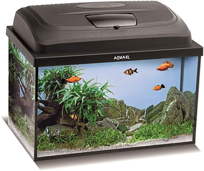 [Prime] 40x25x25 kleines Aquarium im Komplettset