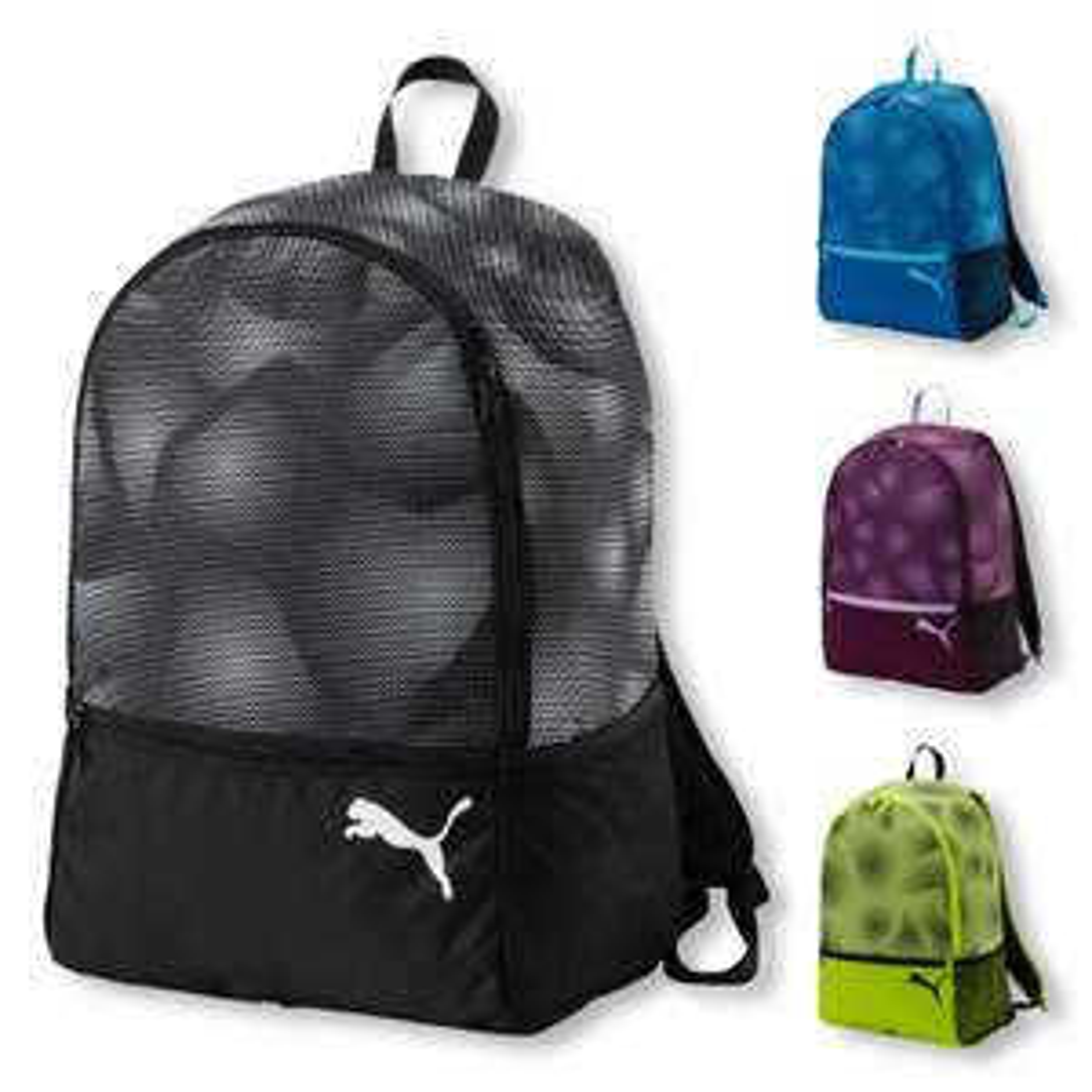 Puma Rucksack Alpha Backpack 25 Liter in 4 Farben