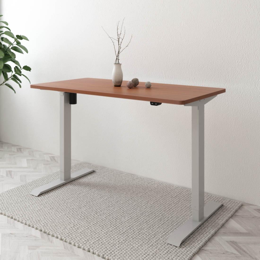 Flexispot Schreibtisch Höhenverstellbar E1 mit Platte