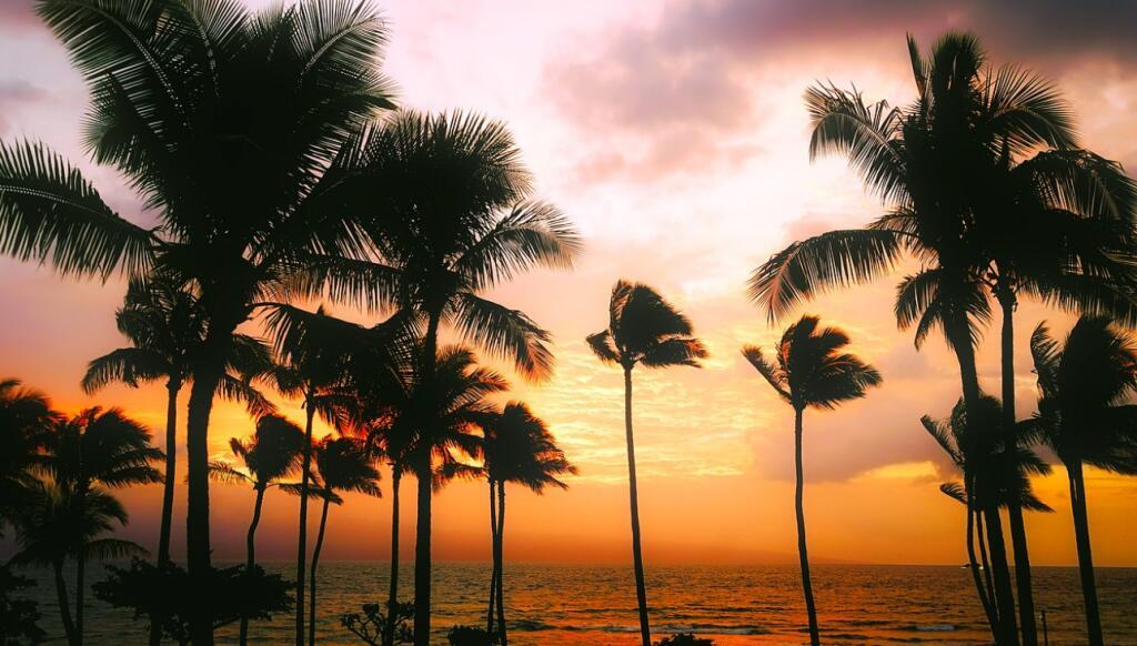 15 Tage Grand Princess-Kreuzfahrt via LA und Hawaii - inkl. Flug, 1ÜN in Los Angeles, Vollpension uvm. ab 3.998 € bei einer Reise zu zweit