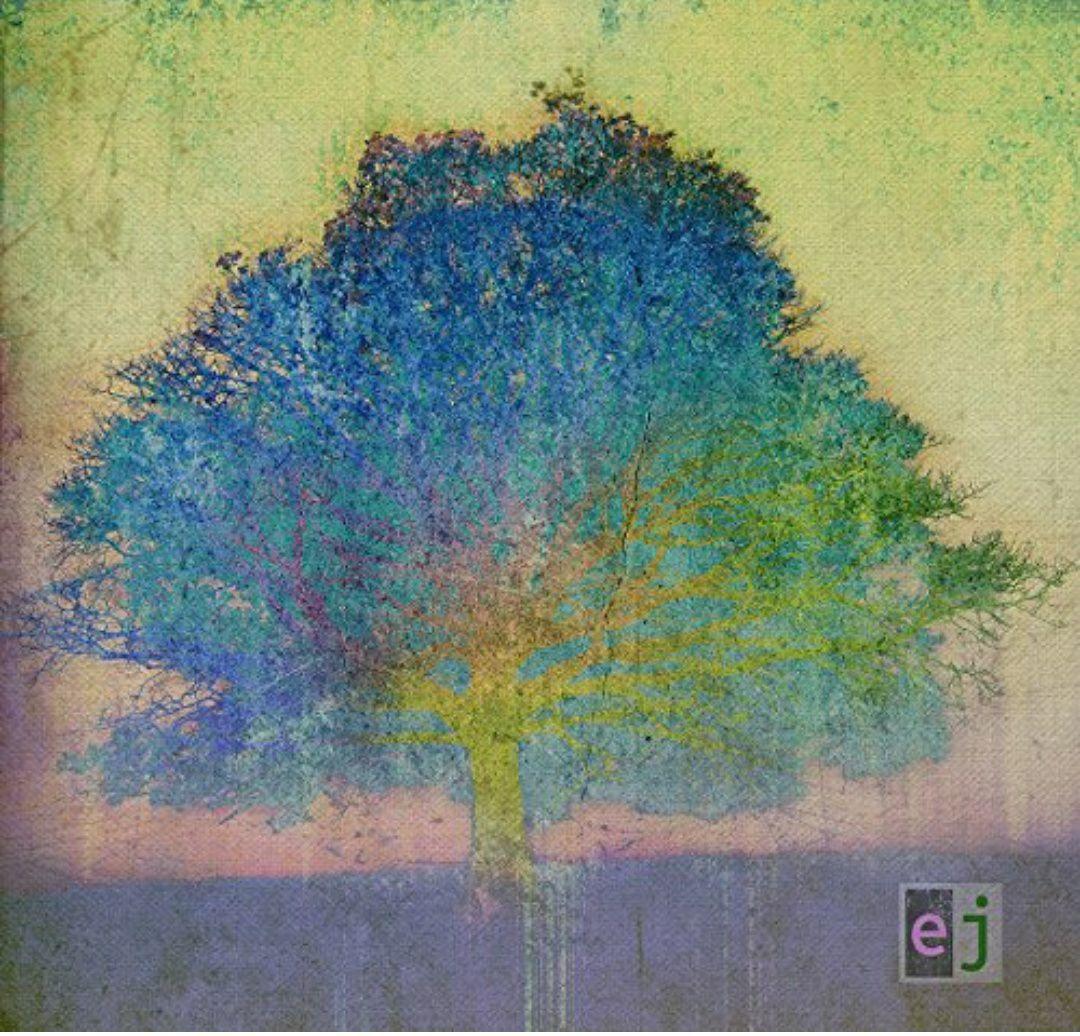 (Prime) Eric Johnson - Ej (Vinyl LP + Mp3)