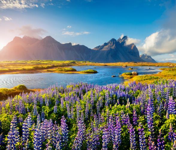 Flüge: Island (Juli-Nov) Nonstop Hin- und Rückflug mit Wizzair von Dortmund ab 22€