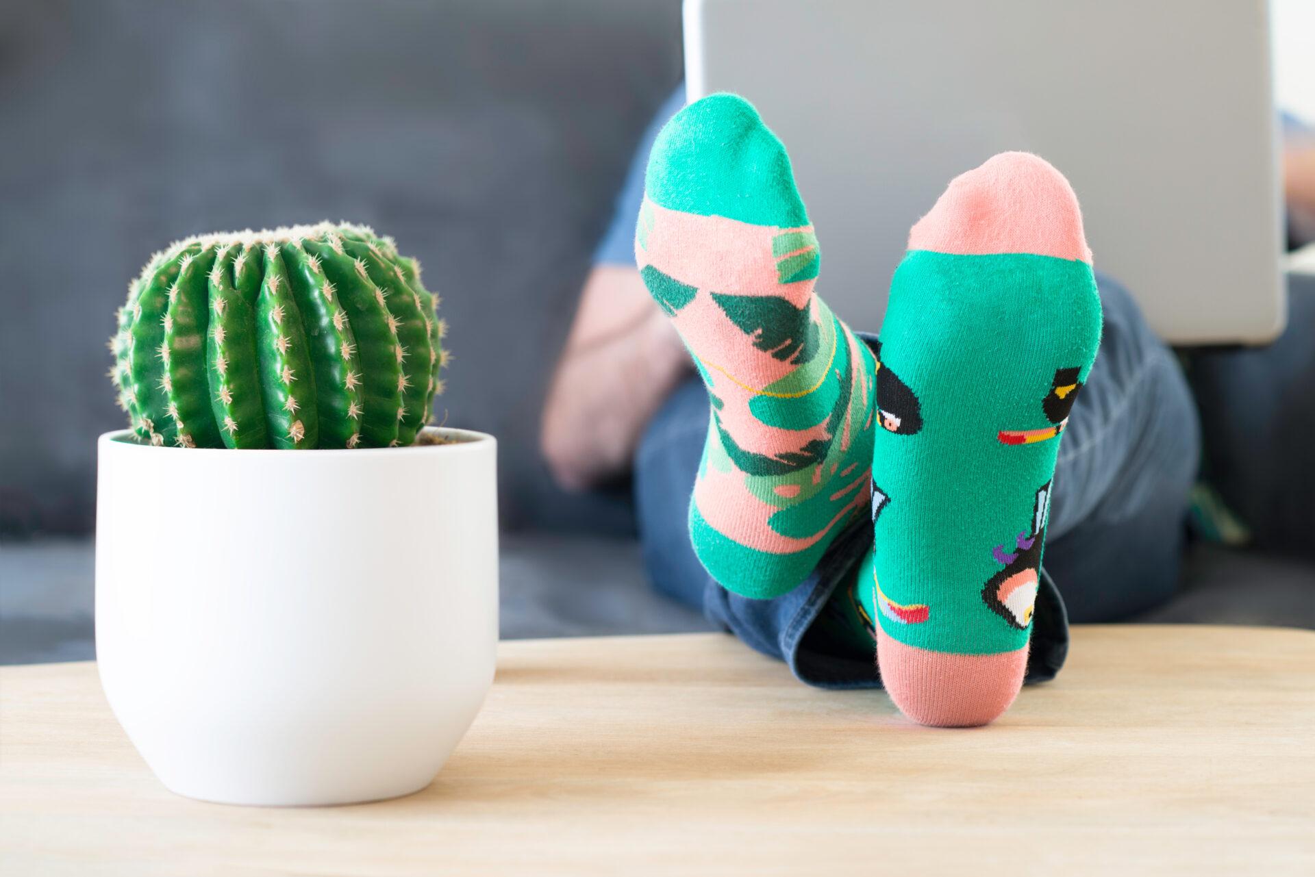 Socken bei MySox für 1€ inkl. Versand - Kostenloses erstes Probeabo + 1€ Versandkosten