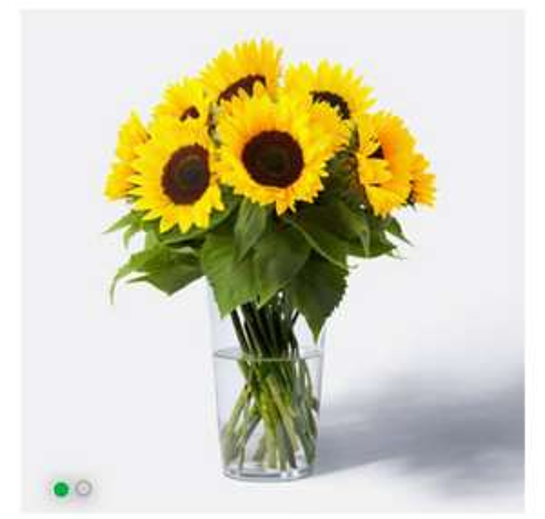 *WIEDER DA, NEUKUNDEN* 10 Sonnenblumenstiele für 10€ inkl. Versand (evtl. -12% durch Corporate Benefits & -14% durch TopCashback)